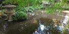 庭園の水堀2