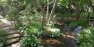 庭園の水堀3