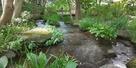 庭園の水堀4