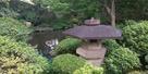 庭園の水堀5