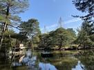 芦城公園あやめ池