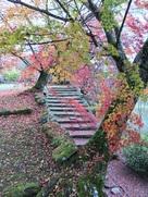 紅葉で綺麗な西の丸跡周辺…