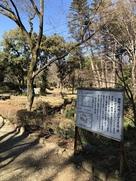躑躅ヶ崎館跡