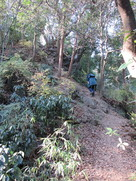 本郭へ登る道