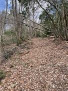柳ヶ瀬からの刀根越え登城路…