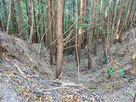 四連続堀切四番目の堀切から落ちる竪堀