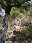 石積櫓へのはしご…