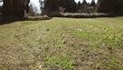 馬乗り場中央部の曲輪と土塁