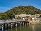 春の鳥取城