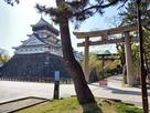 八坂神社鳥居と天守…
