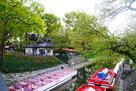松川と新緑の城址公園…