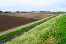 堀跡が発掘調査された場所…