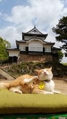 天守と猫城主のさんじゅーろー