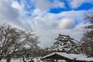 彦根城 雪景色