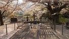 武田信義公墓塔…