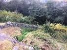 西の丸三重櫓西側の登石垣…