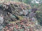 郭2の石垣