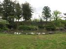 本丸内の庭園と石垣…
