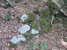 本丸東側虎口の石垣…