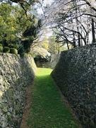 清正像の裏側にある堀