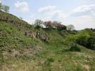 伊治城の周辺スポット(鶴丸城)…
