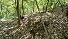 出城熊城の畝状竪堀群…