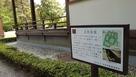 主郭庭園跡