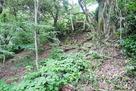 本丸下の石垣跡