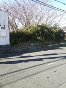 天神山曲輪南方堀跡を東側から撮影…
