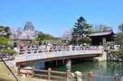春の桜門橋と天守(改修前)…