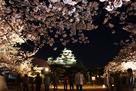夜桜とライトアップされた天守(改修前)…