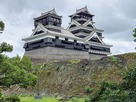 加藤神社側からの完全復旧の天守閣…