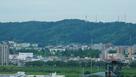 市役所展望台からの白鳥城遠景