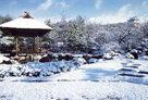 雪の好古園