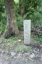 城跡石碑(とキノコ)…
