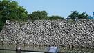 鉄門水堀側の石垣