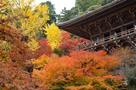 書写山円教寺の紅葉…