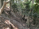 二の木戸北側の畝状竪堀群…
