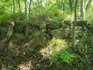 登城道からの石垣…