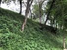 南側の外曲輪の堀から本曲輪を見上げる…