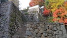 石垣(秋)