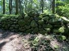 三の丸 河原石の石垣…