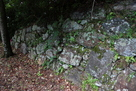 大手門付近の石垣…