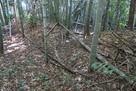田中城 麓の屋敷跡土塁…