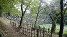 楓と土橋石垣
