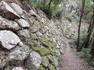 北二の丸下段の石垣…