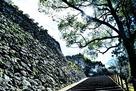 本丸への登城口…