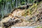 登城道途中、今なお残る地震での崩落…