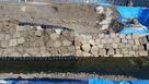 発掘された天守台の石垣…