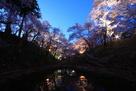 高遠城址公園の夜桜…